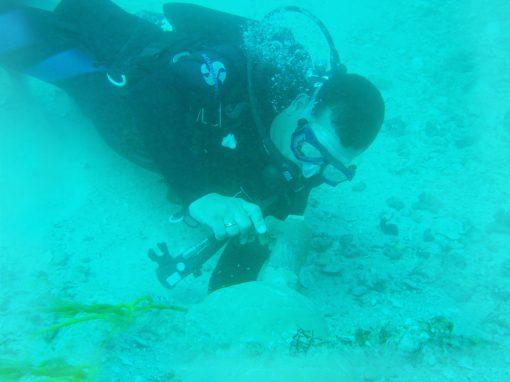 Apoyo marítimo para el trabajo de instalación del  cable internacional de fibra óptica (ATLÁNTICO  I).  Situado en Punta Gorda – Estado Vargas.  Venezuela. Año 2016.